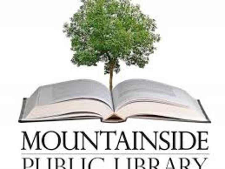 a5c57eda85d8e0f7100d_mountainside_library.jpg
