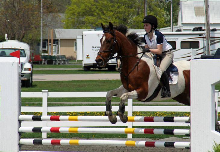 a66d526ec558e6ae10b2_Garden_Stat90e_Horse_Show_18_By_Lillian_Shupe.JPG