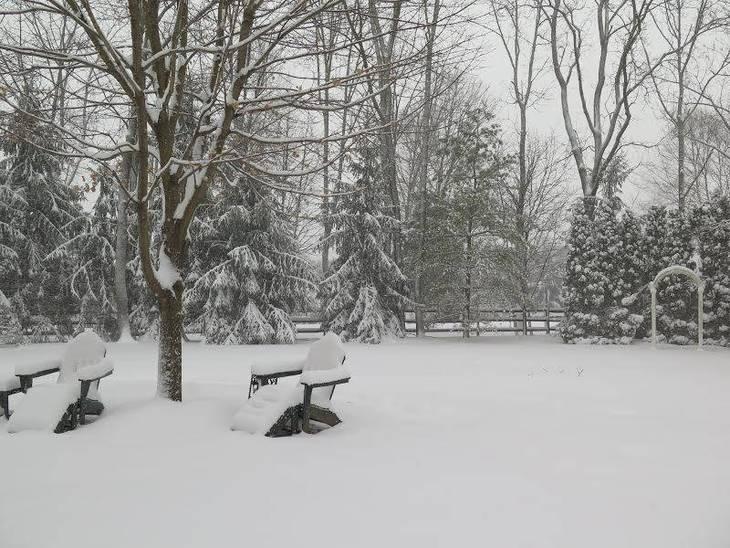 a8058b8facffa5dc2c1b_SNOWday2.17.4BBA.jpg
