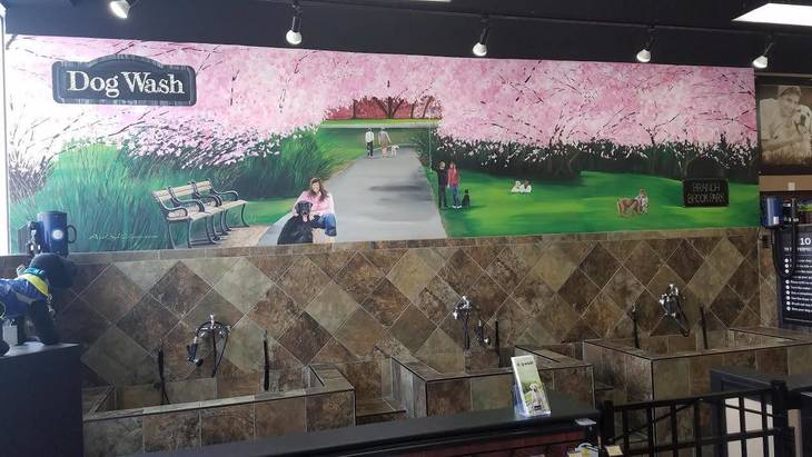a80b449232cfe7463cda_PetValu_Dog_Wash_Mural_Branch_Brook_Park.jpg