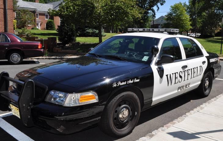 aa18a568157f4d1a611b_police_car.JPG