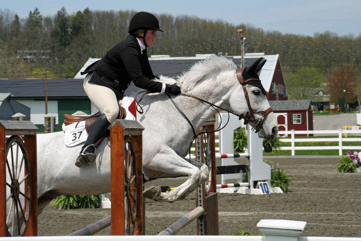 aaf2f4675b8d89983574_Garden_Stat92e_Horse_Show_18_By_Lillian_Shupe.JPG