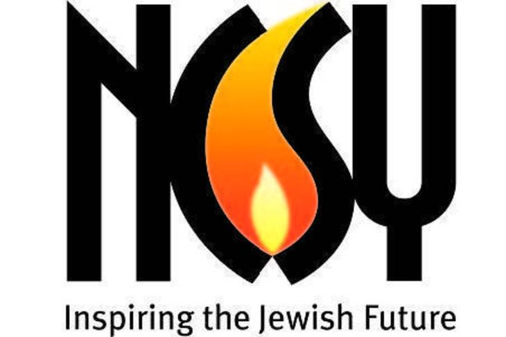 abad3fe9ed6e31abc936_ncsy-logo.jpg