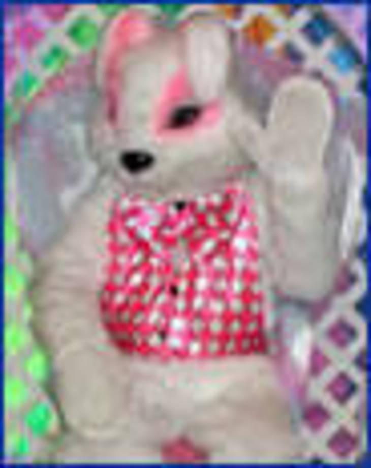 abd3f74cabb5e27028b5_mr_bunny_06.jpg