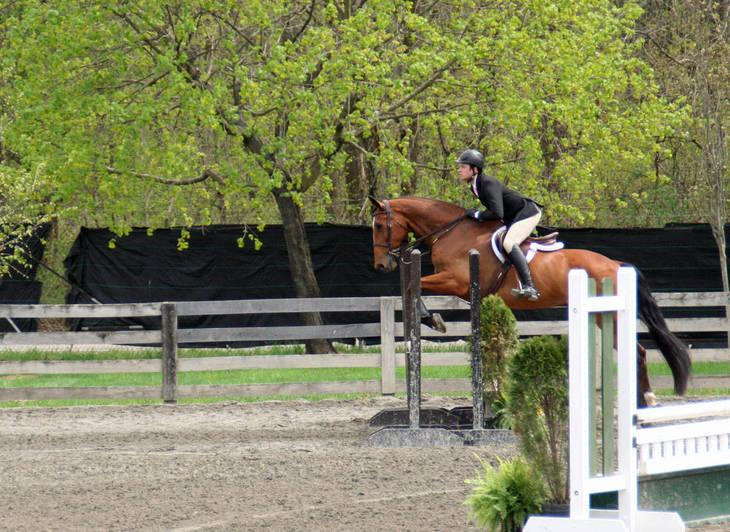 ac5a5a4a336920dc30c4_Garden_Stat70e_Horse_Show_18_By_Lillian_Shupe.JPG