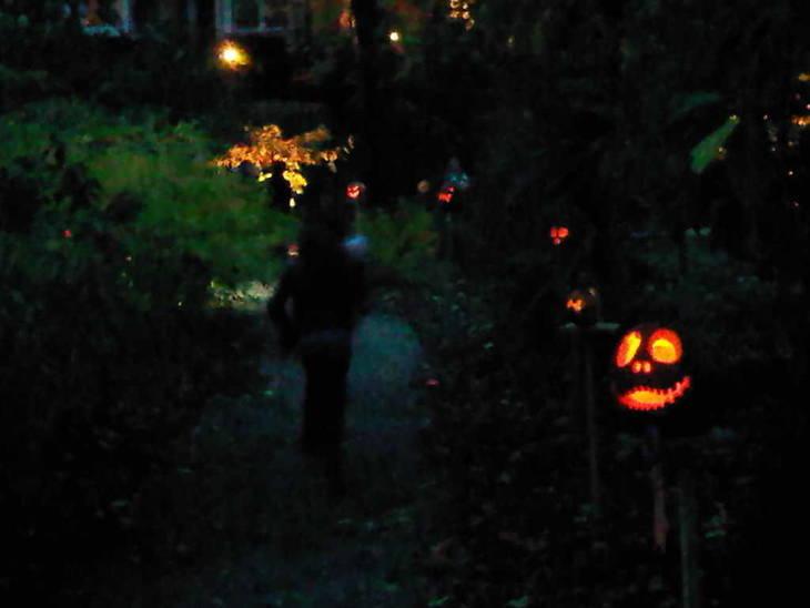 ae468181d88603320a94_pumpkin_evening_shot.jpg