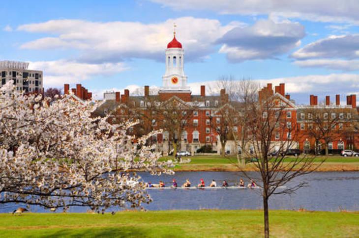 afa6ec5d7d11f0947414_Harvard_University.jpg