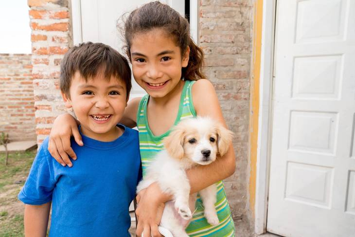 b1746a1da5eab16d06aa_sister-brother-puppy-re.jpg