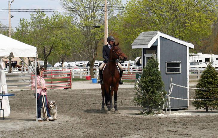 b7faaa1c67eff78297f1_Garden_Stat77e_Horse_Show_18_By_Lillian_Shupe.JPG