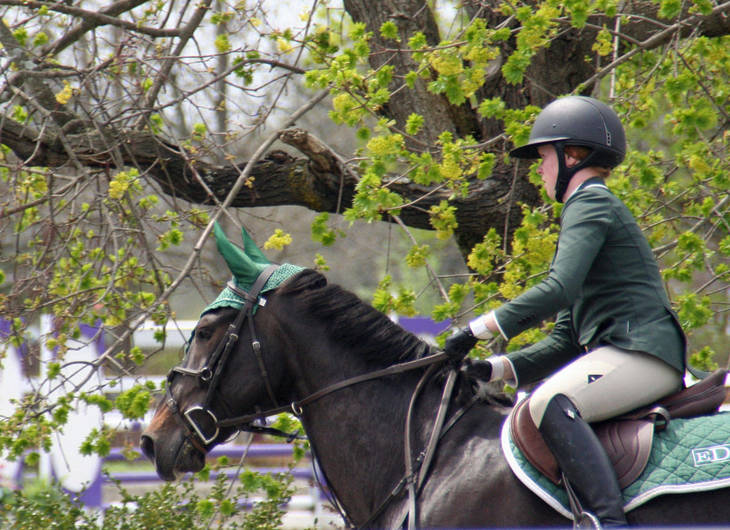 ba018a885ba4f42cc179_Garden_Stat108e_Horse_Show_18_By_Lillian_Shupe.JPG