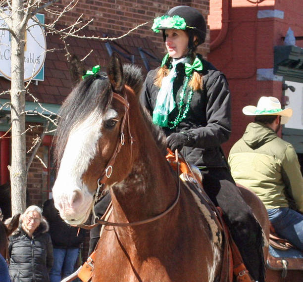 bcaf588432bf7008654b_Sussex_St_Pats_Horses04.JPG