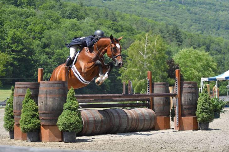 c01da57231c0fddae634_Morgan_Ward_Vermornt_Horse_Show11.JPG