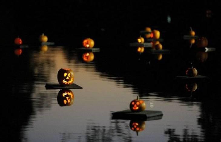 c2b0697bfb4cfc5ecd20_Pumpkin-Sail-1.jpg