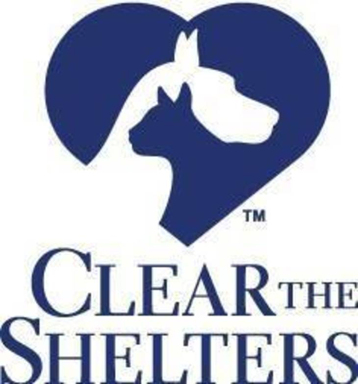 cbbd505d9cd948a964c3_Clear_the_Shelters_logo.jpg