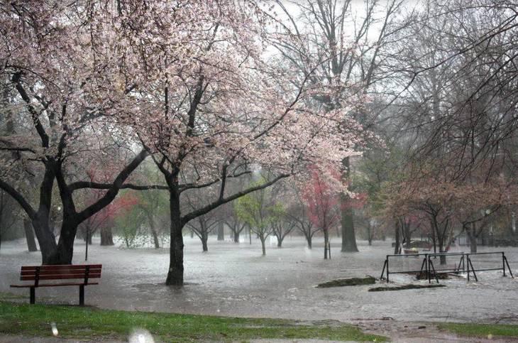 cc314cd1bd4bbe528063_April_16_Flooding_c.JPG
