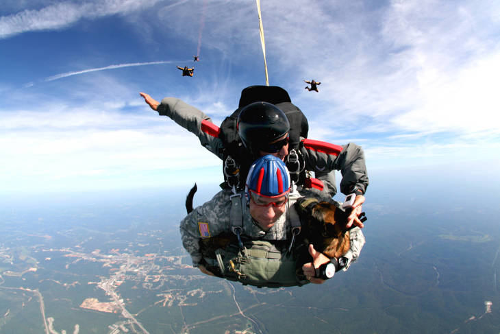 ce883733b4b22c7a82f4_War_Dogs_Skydiving.jpg