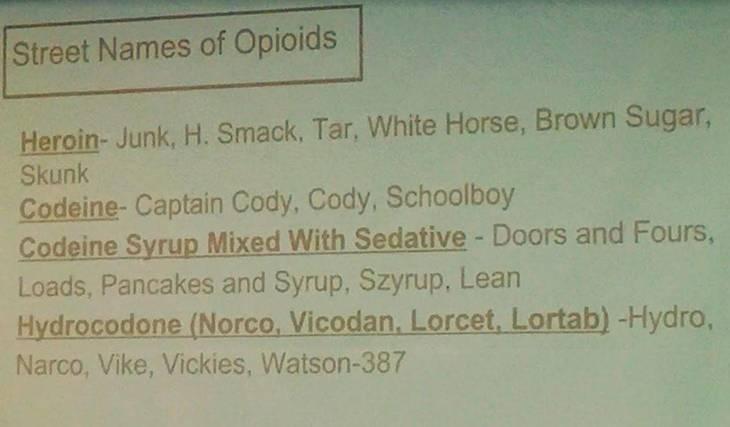 d145dd7d94df0d790a4d_Opioid_Panel_Dec_4_Nutley_c.JPG