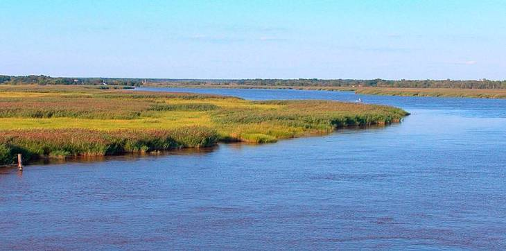 New Jersey Audubon's Healthy Land and Waters Grants Fund Conservation Practices on Farmland