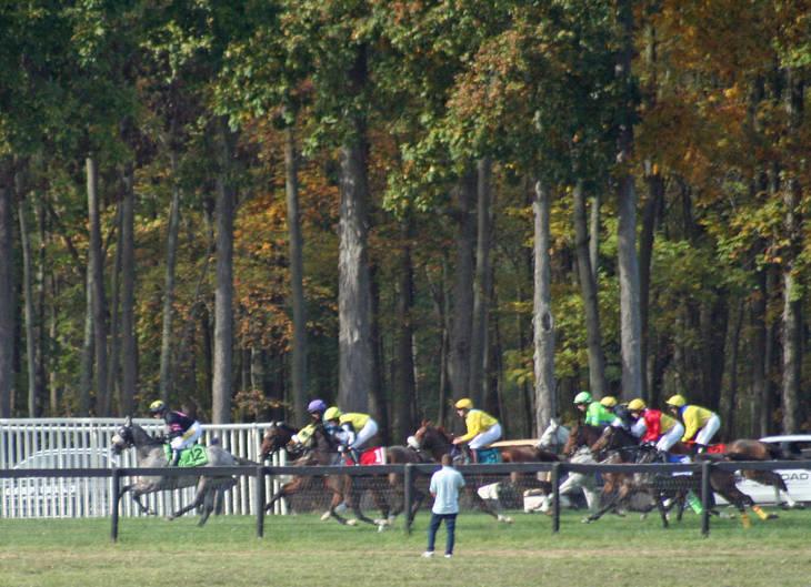d7a1a702919bb595ac1a_Far_Hills_Races_Undercardl235.JPG