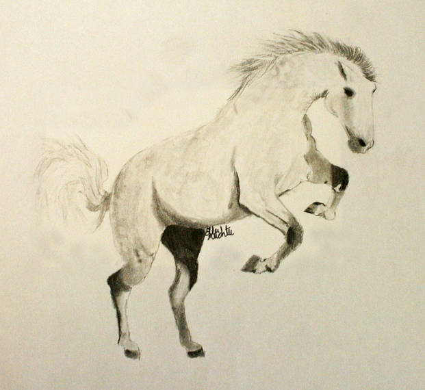 ddfac3be18e57e70b349_4h_equine_art_winnersa01.JPG