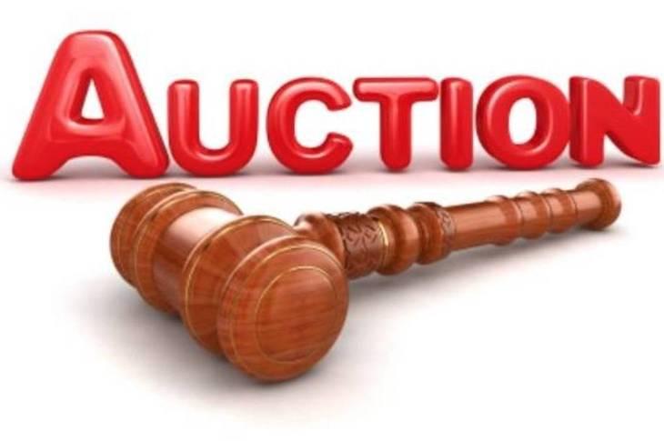 de23178c8df2d28138a6_b9b9b4d9c19f06b4a441_auction.jpg