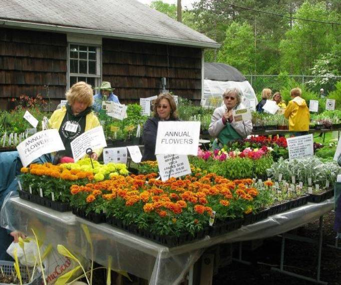e9a06ff57676f5412a1c_Garden_Fair_with_marigolds.JPG