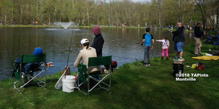 ecf701366bf48db2a445_a_The_Masar_Park_fishing_derby__2018_TAPinto_Montville.JPG