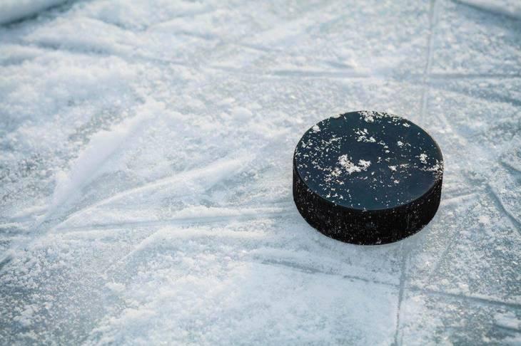 ee0a794177a3ed6f6ed7_hockey.jpg