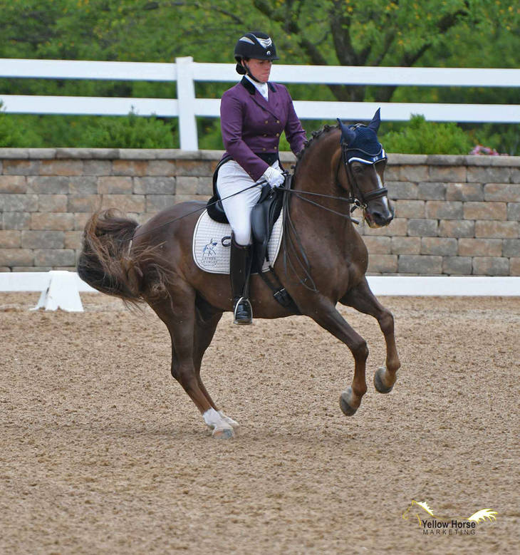 eed22bdca3f7433d5cd3_Pony_Dressage_Cup35.JPG