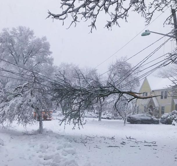 ef245e3d0fd7c9687289_snow_storm_maplewood.jpg