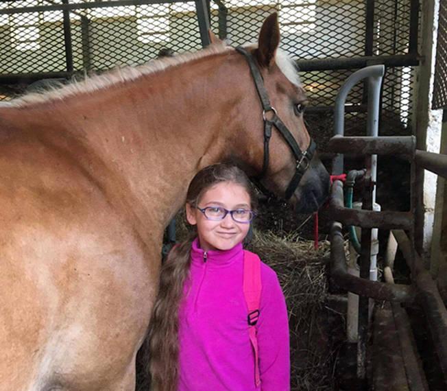 f16d3d5837c7d4342b88_auction_horses006.JPG