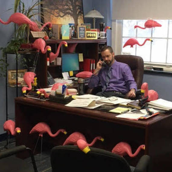 fc99e22b6c7aee52c217_650e94baf9f44782cfb1_Principal_A_Surrounded_by_flamingoes.jpg