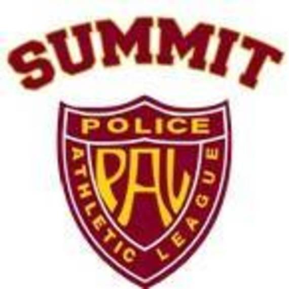 fd210d0da6e43c068189_Summit_PAL_Shield.jpg