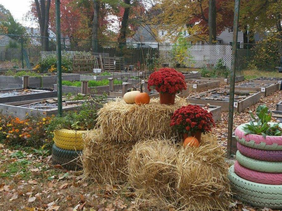 d0cc203b80d796508679_Union_garden_fall__1_.jpg