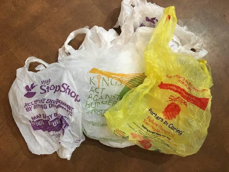 d32e2c2cc5e1a2a7d585_shopping_bag.JPG