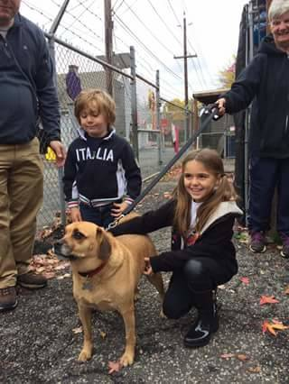 d47a501c92e8e43f6a82_friends_of_linden_animal_shelter_4_with_aj.jpg