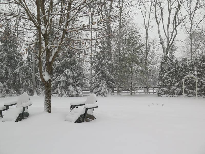 d657ec82af52da0feb41_SNOWday2.17.4BBA.jpg