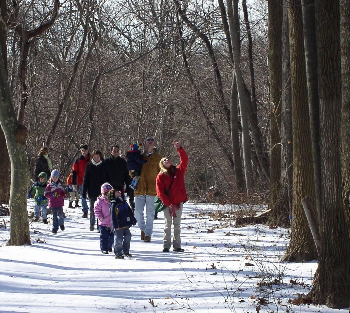 d6ac8c613d9634d55f05_February_Festivites__Winter_Walks_.jpg