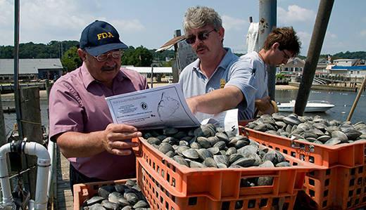 e355184cf9980f0f9d45_aquaculture-520.jpg