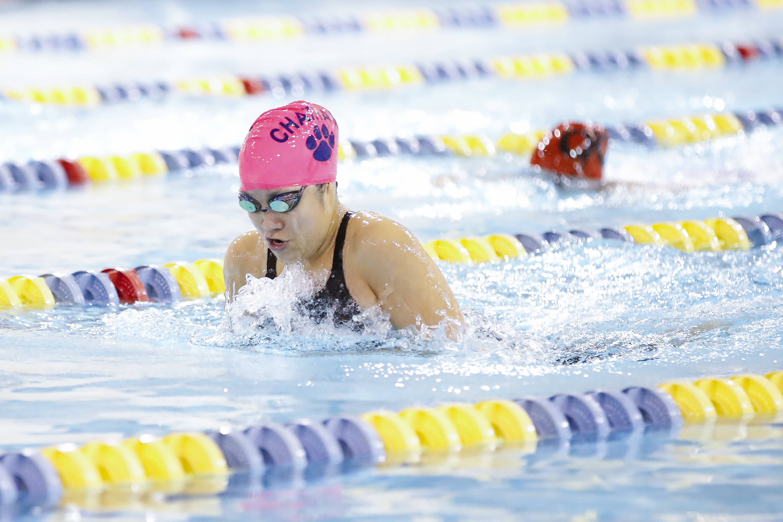 e9b7e4f3f2b0518d9335_e415f49c7c57fb0b3f0f_SwimChamps_Girls-3.jpg