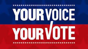 f417d9a2ed1dd2410690_vote.jpg