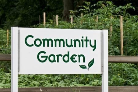 fa93c48a54c60e936b3c_community_garden_sign2.jpg