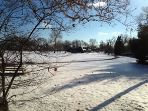 Enjoy the Snow, Millburn, photo 1