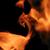 Tiny_thumb_75cca7f4a74b82837bdb_fire_matthew_venn