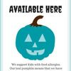 Small_thumb_4700c35f6b5d1cad5d8f_teal_pumpkin