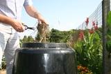 Thumb_d71b42dbbeb412c0929c_composting