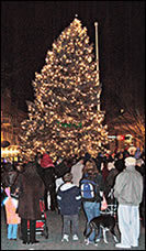 bc5ed42b10a023bfc320_tree_lighting.jpg