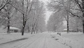 Carousel_image_f0549460ac3c6f78db63_snow-520