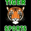 Small_thumb_31ead180ebf49cc3c0c9_tiger_sports_logo