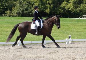 Carousel_image_01c454595b1c0cb9ebd1_bucks_county_horse_trials_sept_10_2017064